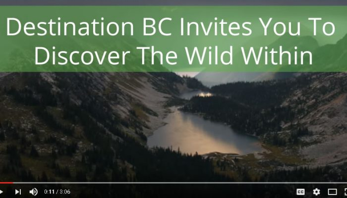Destination BC Wild Within Tourism Strategy
