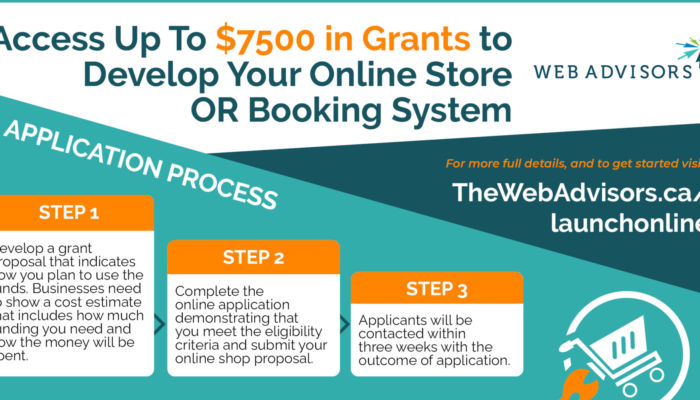 launch online grant program infographic